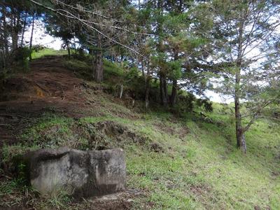 Finca En Venta San Vicente Antioquia 4 Ha