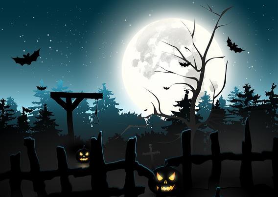 Fundo Fotográfico Tecido Floresta Halloween 3,00m X 3,00m