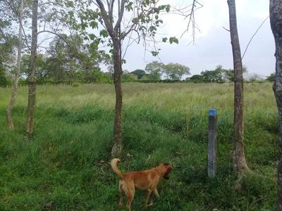 Venta De Finca En Campeche Atlantico