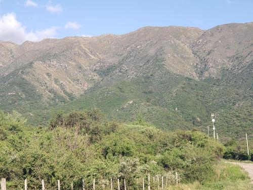 Imagen 1 de 16 de Hermosa Fracción De Bosque En La Zona Mas Alta!!!