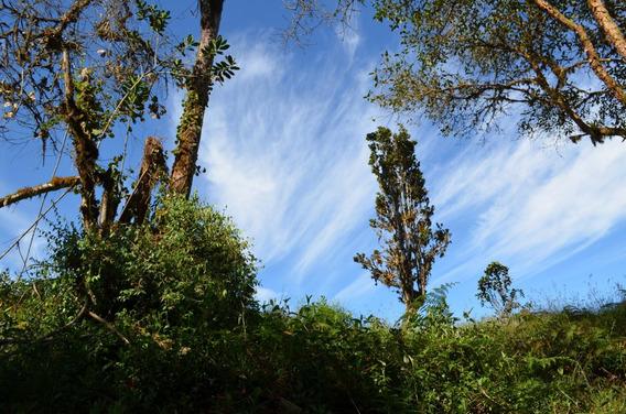 Vendo Finca Reserva Natural Fomeque Cerca Chingaza
