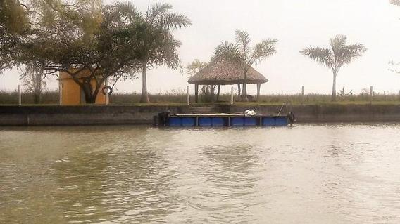 Terreno En Venta Sobre Río Tamesí, Tampico