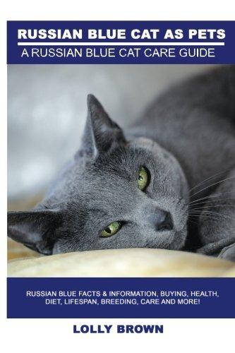 Gatos Azules Rusos Como Mascotas Datos Y Información Sobre