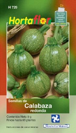 Semilla De Calabaza Redonda 9g, 85 Semillas Aprox