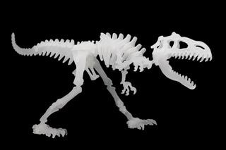 Rompecabezas Dinosaurio 3d