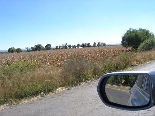 Terrenos De Siembra Entre P. Escobedo Y San J. Del R 600 Has