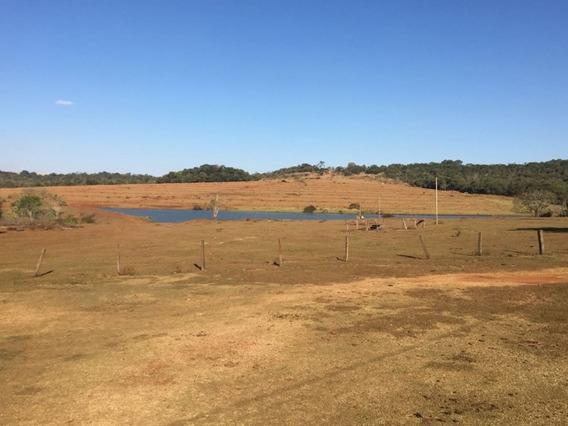 Fazenda A Venda Em Porangatu - Go - 1152