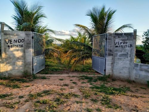 Imagem 1 de 5 de Chácara E Roça A Beira Da Barragem De São José Do Jacuípe