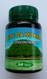 Leite Da Moreira Concentrado 60 Caps De 500 Mg