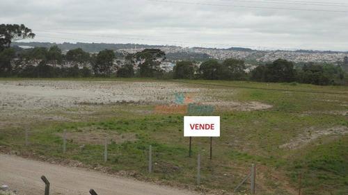 Terreno À Venda, 20.828 M² Por R$ 4.082.358 - Thomaz Coelho - Araucária/pr - Te0047