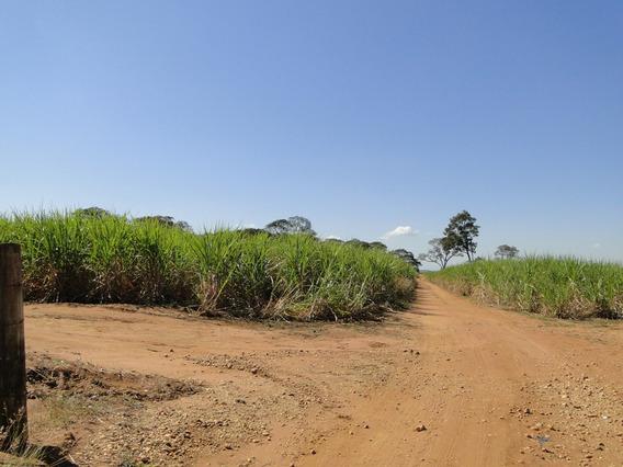 Imovel Rural - Rural - 4842