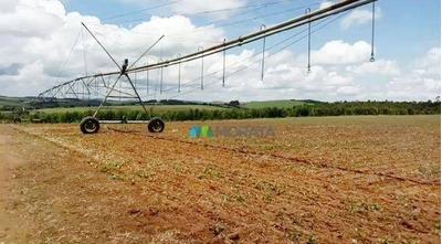 Fazenda Para Lavoura - 585 Ha - Região Madre De Deus De Minas (mg) - Codigo: Fa0018 - Fa0018