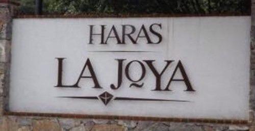 Haras La Joya