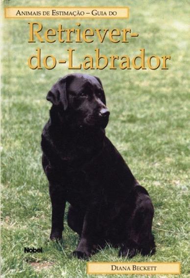 Guia Do Retriever Do Labrador - Animais De Es