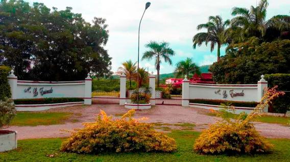 Negocio Hacienda En Venta En Barquisimeto Lara #20-4111