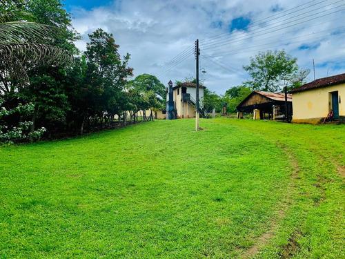 Imagem 1 de 15 de Vendo Fazenda Com 55 Hectares Na Região De Itajuípe/ba - 4586