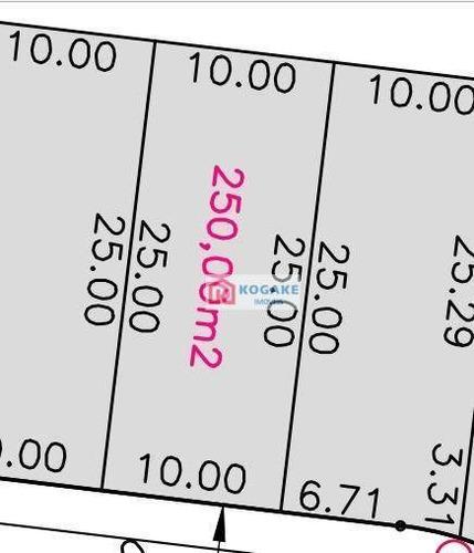 Imagem 1 de 1 de Terreno À Venda, 250 M² Por R$ 272.250,00 - Putim - São José Dos Campos/sp - Te1643