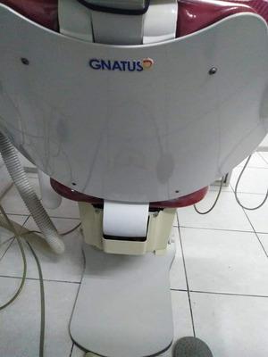 Se Remata Dos Unidades Dentales Gnatus