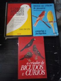 3 Livros Sobre Passaros