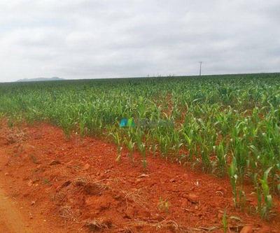 Fazenda Para Lavouras - 1548 Ha - Região Carmo Do Rio Claro (mg) - Codigo: Fa0103 - Fa0103