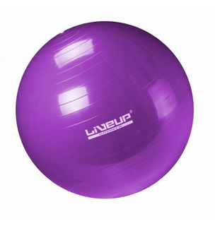 Bola Pilat 55cm Ball Pilates Yoga Aerobica Fitness Ginastica