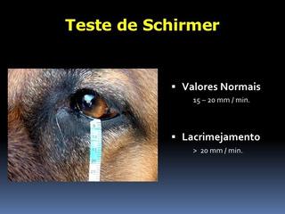Teste De Schirmer - Producao Lagrimas Cx 25 Teste