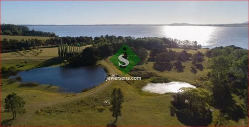Venta Chacra Laguna Del Sauce, 6 Dormitorios, 3 Baños, Con Costa De Laguna- Ref: 167211