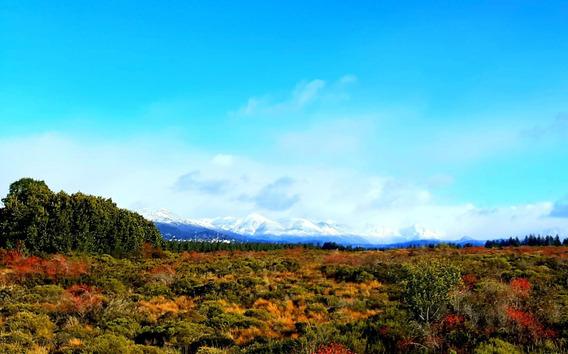 Loteo En Bariloche, Patagonia Argentina