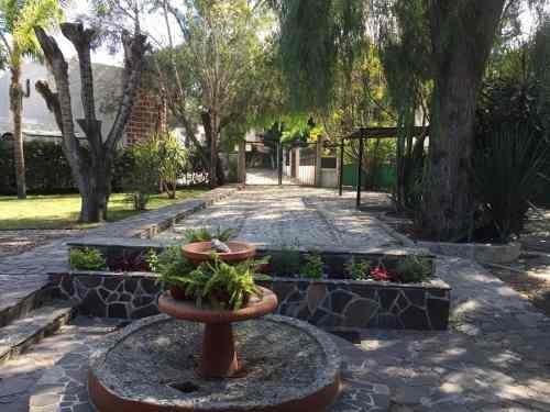 Sms/ Casa En Renta En Colinas Del Bosque