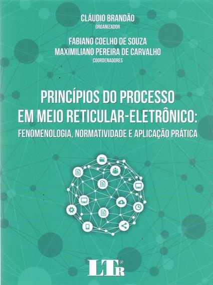 Princípios Do Processo Em Meio Reticular-eletrônico - Fene