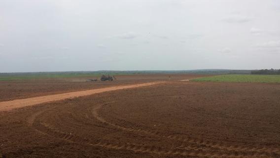 Vendo Troco Fazenda No Tocantins Por Fazenda Pr Ou Sp (6027)