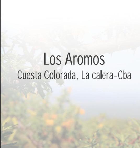 Housing - Cuesta Colorada