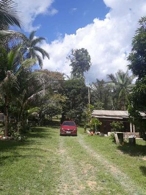 Sítio Produtivo Estrada Am-010 Rio Preto Amazonas