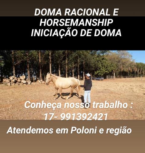 Doma Racional,  Redomão; Correções,  Horsemanship E Treinam.