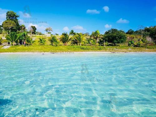 Imagen 1 de 8 de Terreno En Venta En Bacalar, Quintana Roo. Ctv139.