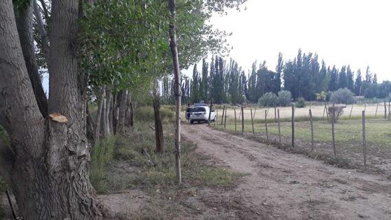 Finca En Alto Valle De Río Negro