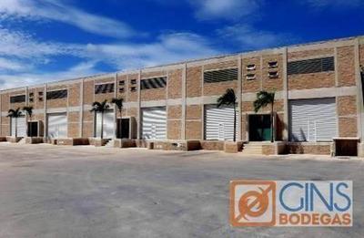 Bodega Comercial En Alfredo V Bonfil, Chacmool