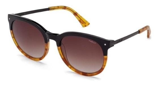 Oculos Sol Colcci C0013a3634 Preto Demi Marrom Lente Marrom