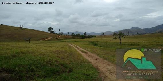 Fazenda Para Venda Em Maribondo, Zona Rural - Fz-074