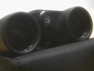 Binoculares Bushnell 4x30 Instafocus Compact Powerview