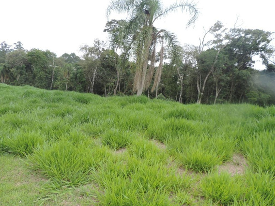 Terreno Em Granja Viana, Cotia/sp De 0m² À Venda Por R$ 360.000,00 - Te397406