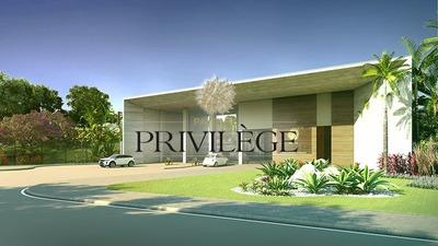Acrc Imóveis - Primeiro Condomínio Fechado De Blumenau - Bem Vindo Ao Privilége! - Te00351 - 33444066