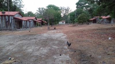 Vendo Fazenda De 9.000 Hectares No Maranhão ( 6028 )