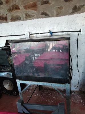Horno Pizzero Acero Gas Garrafa 12 Bandejas C.mesa De Pie