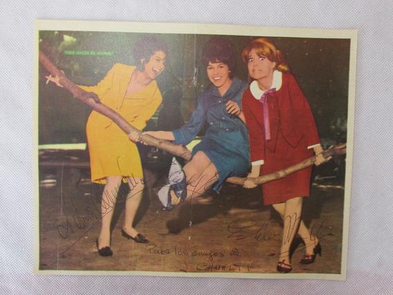 Antigua Lamina Central Tv Guia Tres Chicas En Apuros #l
