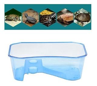 Reptil Habitat Tiras De Habitat Tortuga Lago Reptil Acuario