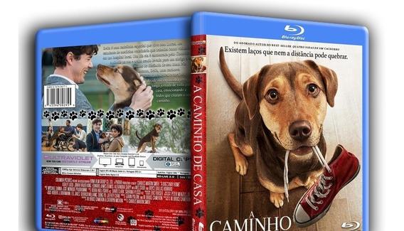 Blu-ray A Caminho De Casa (2019) Dublado E Legendado