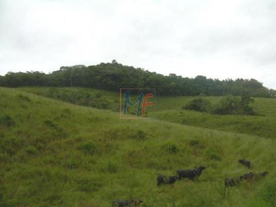 Ref 5557 Excelente Terreno No Bairro Parque Santa Rosa, Ao Lado Do Rodoanel Leste Com 194 Mil M² Área Documentada, Estudam Propostas. - 5557