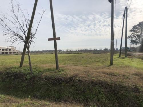 Imagen 1 de 5 de Terreno En Venta En Lobos