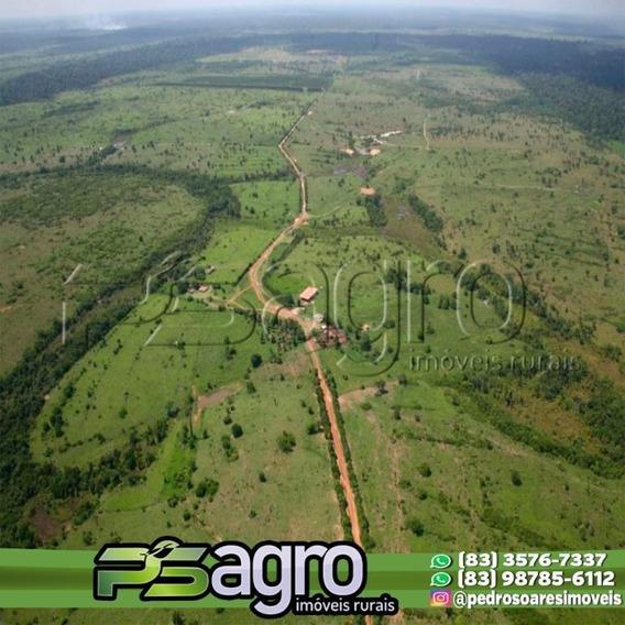 ( Oportunidade Fazenda )fazenda À Venda, 89180000 M² Por R$ 90.000.000 - Centro - Paragominas/pa - Fa0041